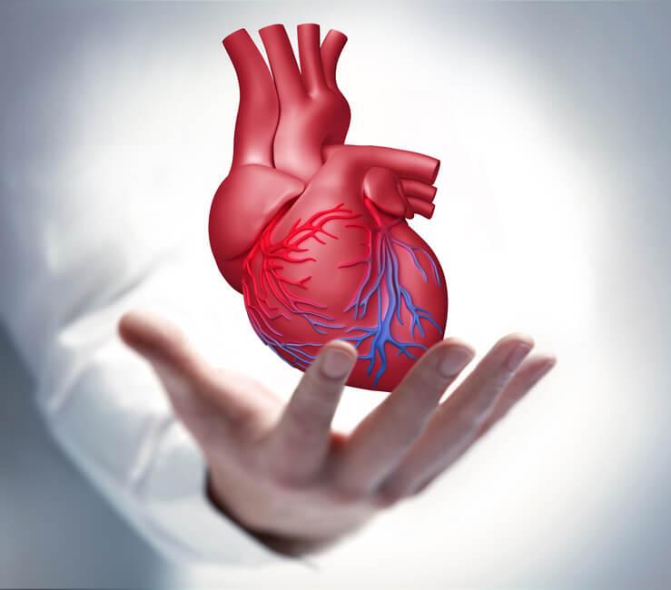 Herz-OP - Arten von Herzoperationen und Risiken